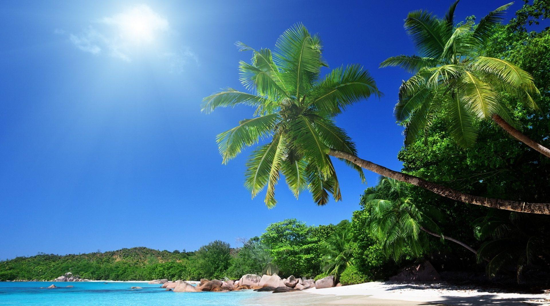 cropped-beach